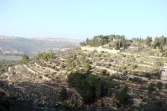 The town of Latran and Ain Karem in Judea. Israel. Landscapes on the streets and on the outskirts of towns. Panorama of mountain ridges covered with evergreen stock image