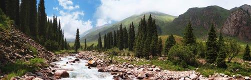 Panorama of a mountain river Stock Photos