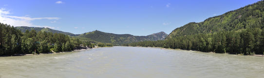 Panorama of the mountain river Katun. Altai. Stock Photo