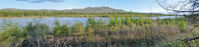 Panorama of a mountain river. Royalty Free Stock Image