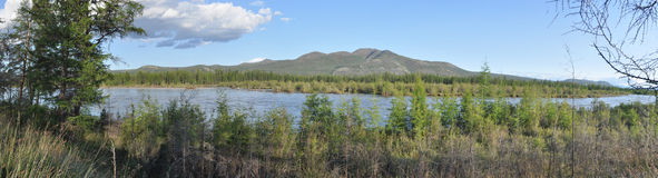 Panorama of a mountain river. Royalty Free Stock Images