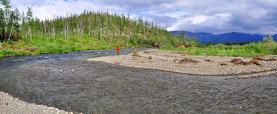 Panorama of a mountain river in Siberia. Royalty Free Stock Photo