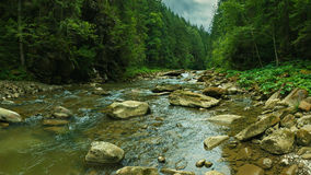Panorama of mountain river with stones in Carpathian mountains in Ukraine Stock Image