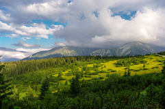 Panorama mountain summer landscape. Tatry.  stock images