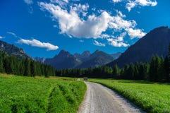 Panorama mountain summer landscape. Tatry. Slovakia.  stock photo