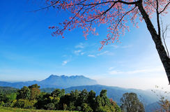Panorama mountain sunset. In Thailand for background design royalty free stock photo