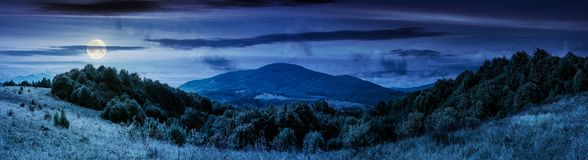 Panorama of mountainous countryside at night. Panorama of mountainous countryside. forest on a grassy meadow. high mountain in the distance. wonderful early stock photos
