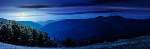 Panorama of a mountainous landscape at night. In full moon light. grassy meadow down the hill in to the forest. lovely summer landscape Stock Image