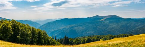 Panorama of a mountainous landscape. Grassy meadow down the hill in to the forest. lovely summer landscape Royalty Free Stock Image