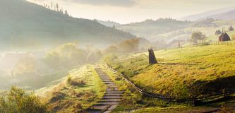 Panorama of mountainous rural area on a hazy morning. Beautiful landscape of Carpathians. haystacks on the grassy hillside. wooden fence along the footpath royalty free stock photo