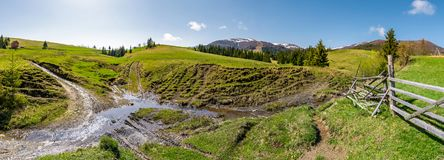 Panorama of mountainous rural countryside. Spruce forest on grassy slopes. wooden fence near the brook. mountain ridge with snowy tops in the distance royalty free stock image