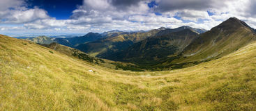 Panorama in Mountains Royalty Free Stock Images