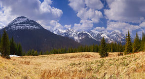 Panorama of the mountains Royalty Free Stock Image