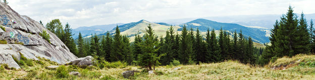 Panorama of mountains. The Panorama with mountains and forest Royalty Free Stock Image