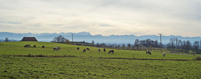 Panorama of the mountains in Bavaria Royalty Free Stock Photos