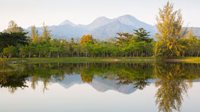 Panorama of mountains and forest reflected in the lake early in the morning Royalty Free Stock Photo