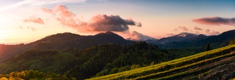 Panorama of mountains at sunset. Beautiful landscape with purple clouds and green hills in springtime Royalty Free Stock Image