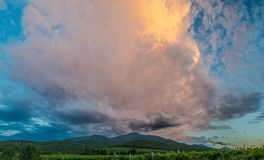 Panorama of mountains and vineyards at sunset. Royalty Free Stock Image