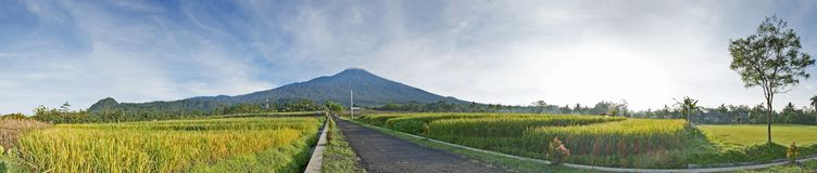 Panorama of mt. Slamet in central java. Indonesia, with vast rice field, beautiful sky and road straight to horizon Royalty Free Stock Photography