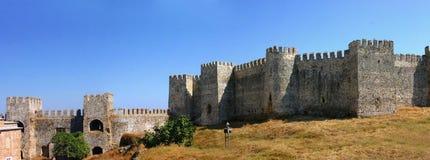 Panorama - Mumure Castle Stock Image