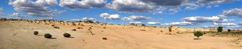 Panorama - Mungo nationaal park, NSW, Australië Royalty-vrije Stock Foto's