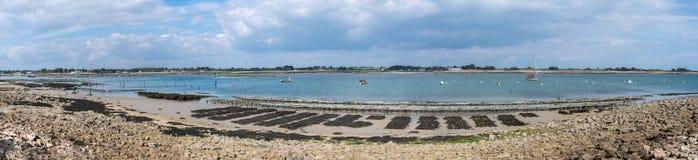Panorama na ostrygowym parku w Brittany Zdjęcie Royalty Free