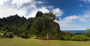 Panorama of the Na Pali Coast. Lady overlooking the verdant hills of Na Pali Coast in Kauai stock photos