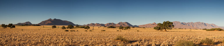Panorama of the Namib desert Stock Images