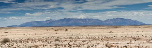 Panorama of the Namib stone desert Royalty Free Stock Photo