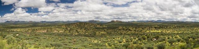 Panorama of the namibian grassland in the rain season Royalty Free Stock Photography