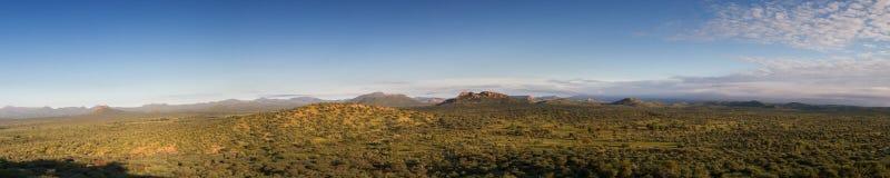 Panorama namibijski obszar trawiasty w podeszczowym sezonie fotografia royalty free