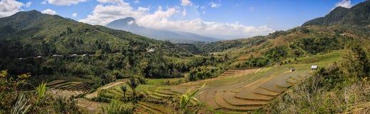 Panorama nas montanhas e nas almofadas de arroz da ilha de Flores perto de Ruteng, Indonésia Fotos de Stock Royalty Free