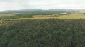 Panorama of the natural landscape. The view over the forest. From the height of bird flight. Summer in the forest. Panorama of the natural landscape. The view stock video