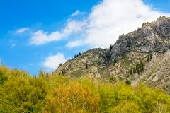 Panorama of the nature of the gorge in Almaty Stock Images
