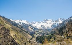 Panorama of nature  green mountains, snow and blue sky in  Kazakhstan Royalty Free Stock Images