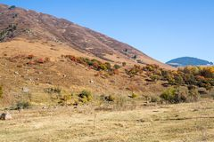 Panorama of the nature of the Kaskelen gorge in  Kazakhstan Stock Images