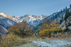 Panorama of nature  mountains, snow and blue sky in Chimbulak Almaty,  Kazakhstan Royalty Free Stock Photography