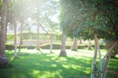 Panorama. The nature and panoramas of Egypt. Hurgada royalty free stock photo