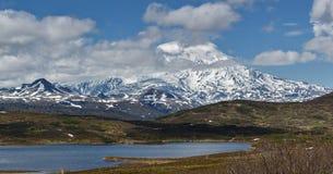 Panorama: naturen av Kamchatka: sikt av vulkan och berget Arkivbilder