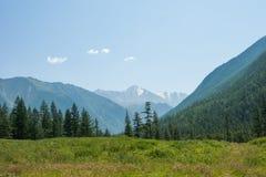 Panorama near the river Kucherla. Trekking in the Altai Mountains Stock Photos