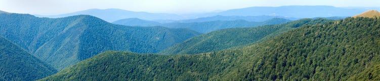 Panorama nebbioso della foresta della montagna di estate immagini stock