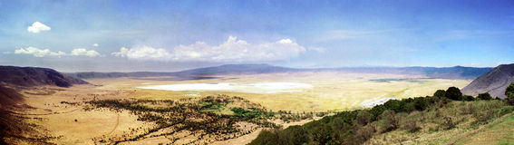 Panorama Ngorongoro Crater. The famous Ngorongoro Crater is a World Heritage Site situated at the eastern edge of the Serengeti in northern Tanzania. The crater Royalty Free Stock Photos