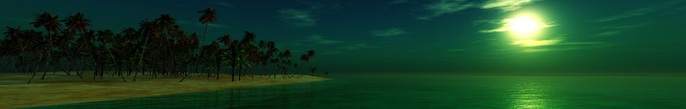 Panorama night beach, tropical beach at night, palm on night beach Stock Image