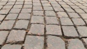 Panorama no close-up pavimentado da rua filme