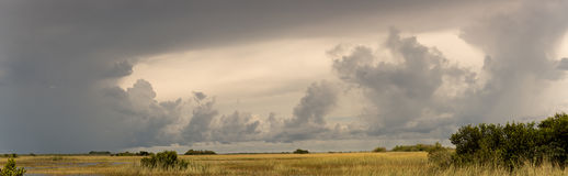 Panorama no parque nacional dos marismas Foto de Stock Royalty Free