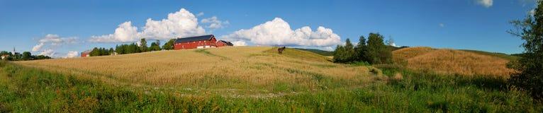 Panorama norvégien 1 de ferme Photos stock