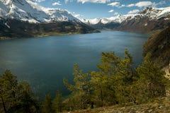 Panorama of Norwegian fiord royalty free stock image