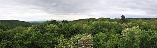 Panorama nuageux image stock
