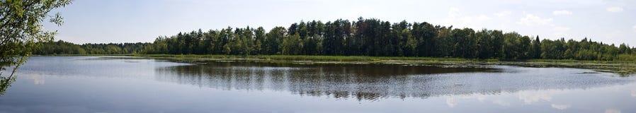Panorama o paisaje del lago y del bosque perfectos para pescar Foto de archivo