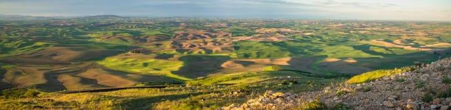 Panorama: O Palouse do montículo de Steptoe no nascer do sol, com rochas Imagem de Stock Royalty Free